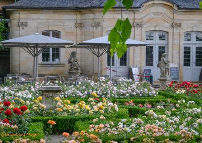 Bamberg Rosengarten