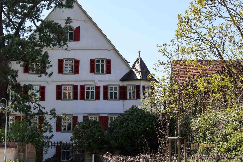Schloss in Essingen 2779