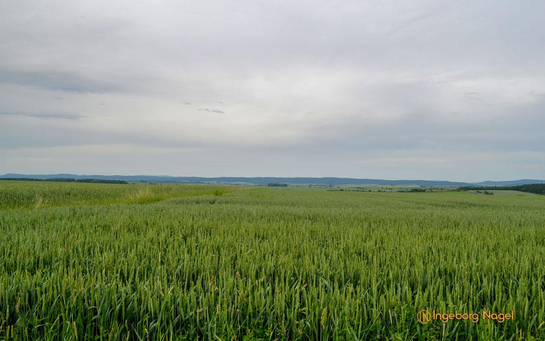 Unterfranken – die Gegend rund ums Grabfeld