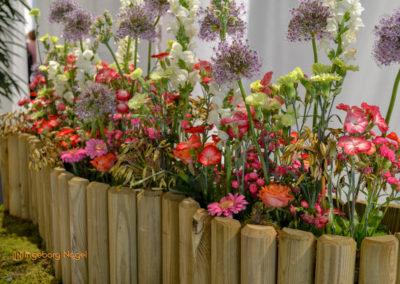 Schwäbisch Gmünd Remstalgartenschau 2019 Blumenschau