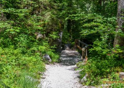 Zauberwald bei Ramsau
