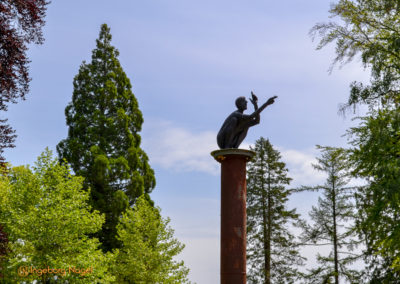 Essingen Remstalgartenschau 2019 Schlosspark
