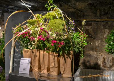 Schorndorf Remstalgartenschau 2019 Blumenschau Heilpflanzen