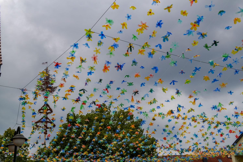 Mögglingen Remstalgartenschau Meraner Blütenhimmel