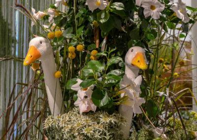 Blumenschau 'Ab nach draußen' Remstalgartenschau 2019 Schwäb.Gmünd