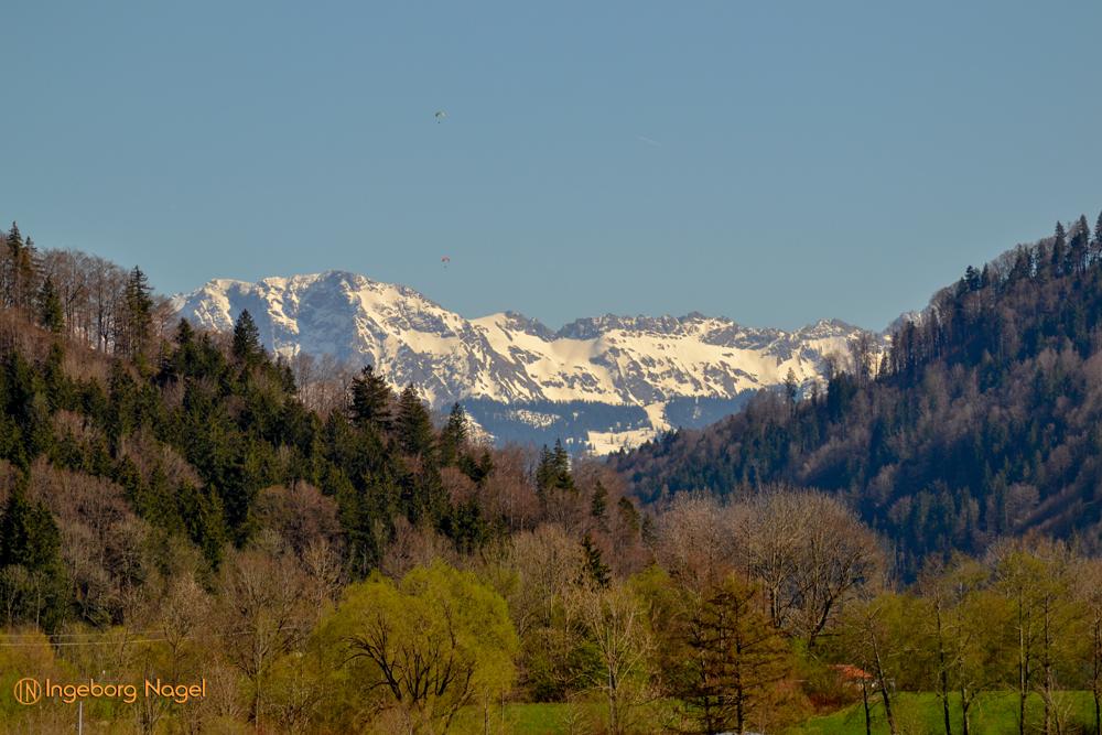 Blick vom großen Alpsee
