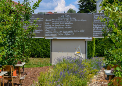 Mögglingen Remstalgartenschau Baumschule