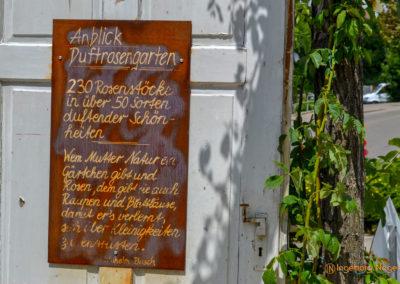 Mögglingen Remstalgartenschau Duftrosengarten
