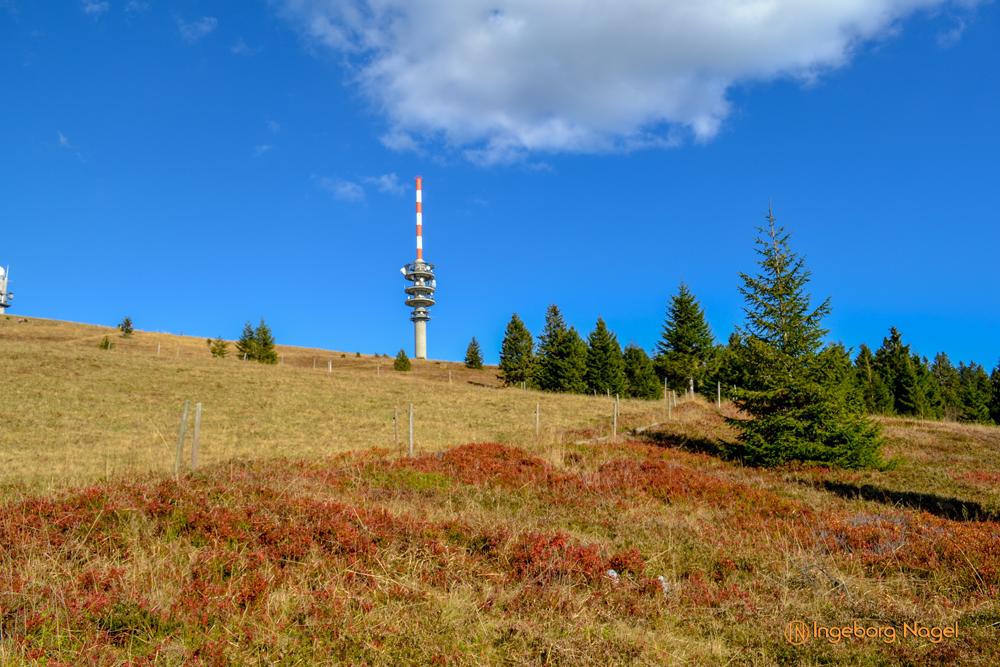 Feldberg im Schwarzwald