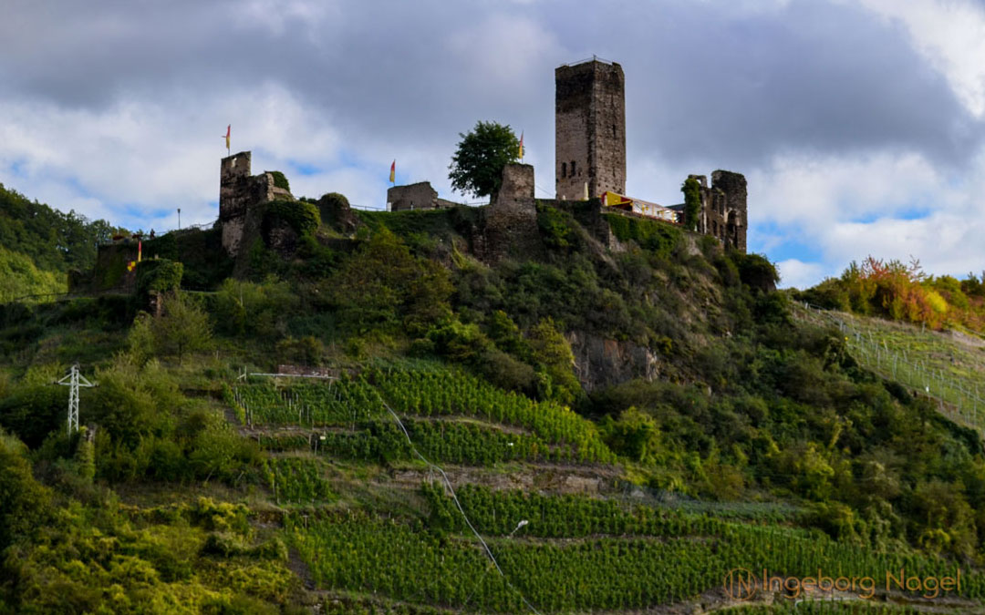 Burg Metternich an der Mosel