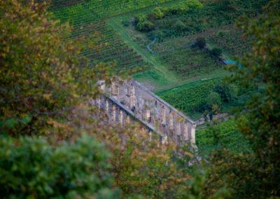 Blick vom Bremmer Calmont auf Kloster Stuben