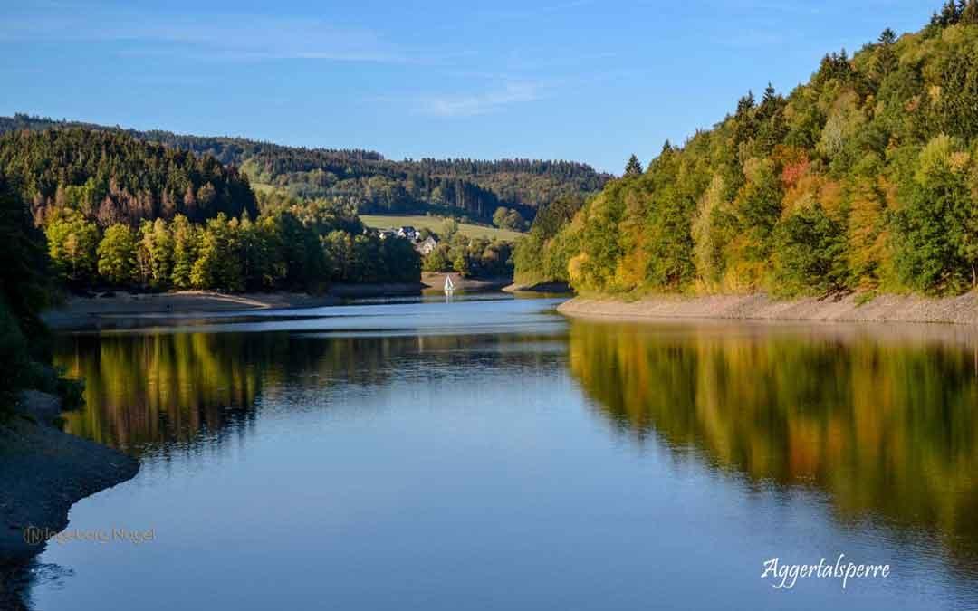 Viel Wald und Wasser – Im Sauerland