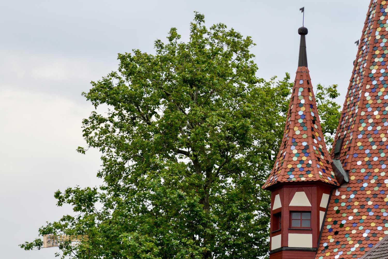 Die Erkertürmchen am Diebsturm in Lindau am Bodensee