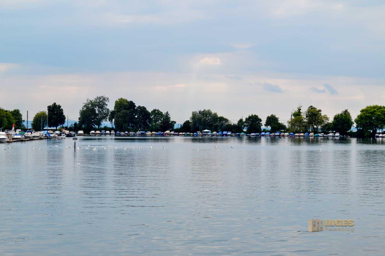 Der Blick auf den Fischerhafen vor Lindau am Bodensee