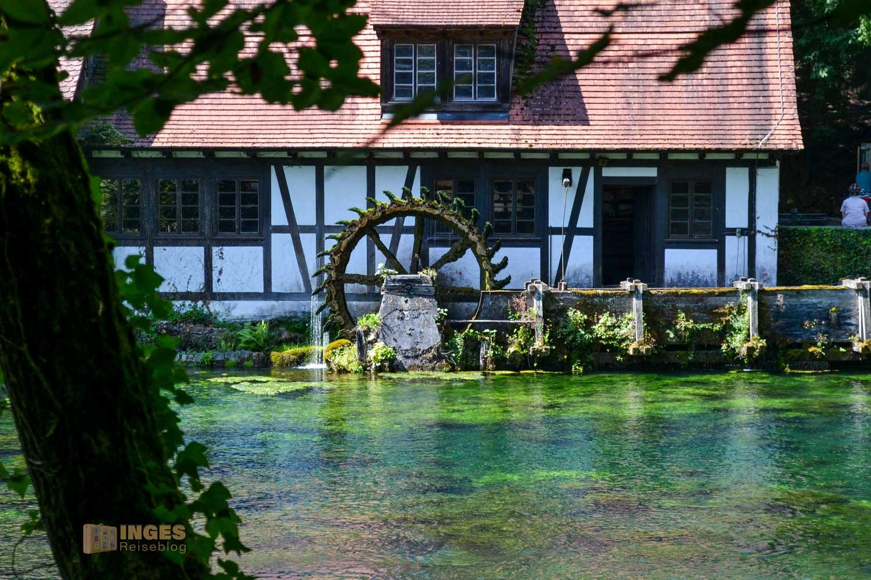 Die Hammerschmiede ist eine Attraktion am Blautopf in Blaubeuren.