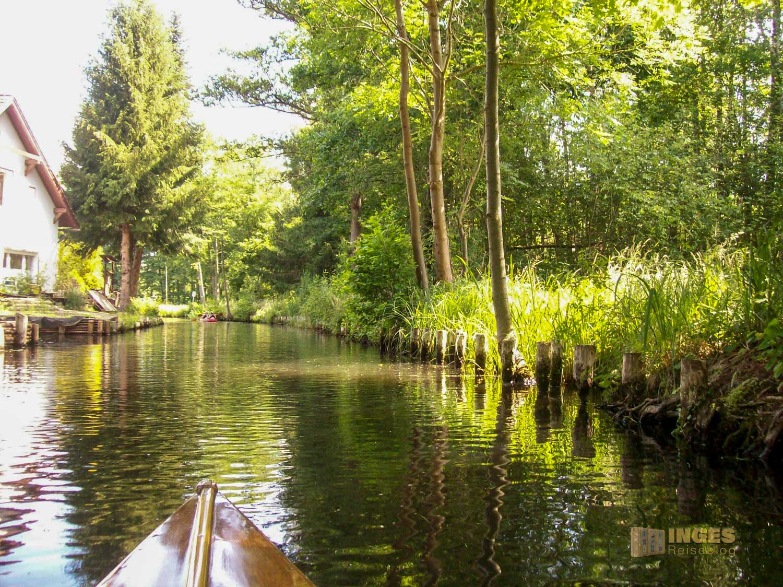 Den Spreewald per Kanu erkunden - Lehde