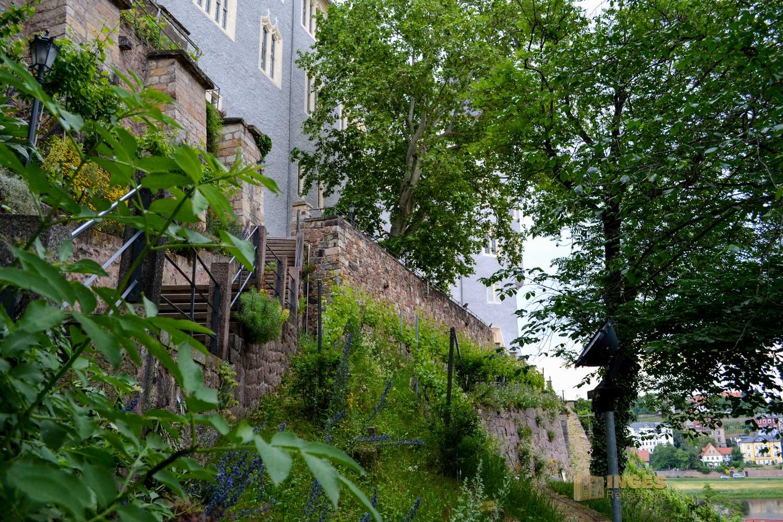 Burgberg Altstadt Meißen