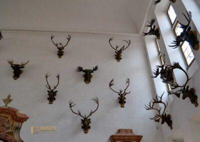 Steinsaal Schloss Moritzburg