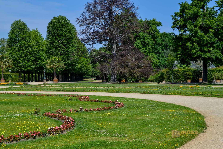 Lustgarten Schloss Pillnitz