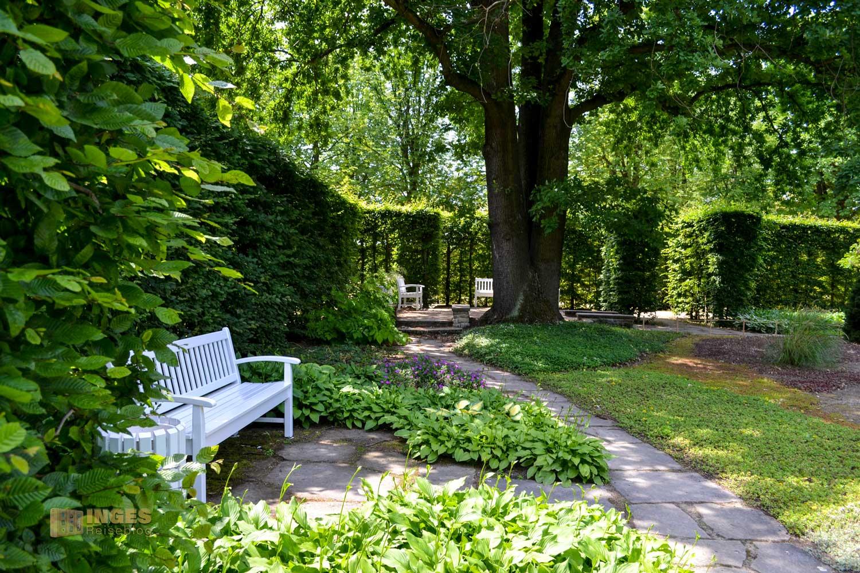 Heckengärten im Park Pillnitz