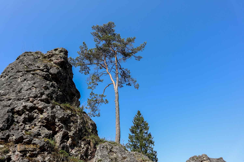 Felsenmeer im Wental