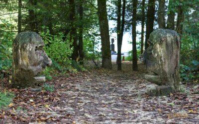 Bei den Waldgeistern am Herrenbachstausee
