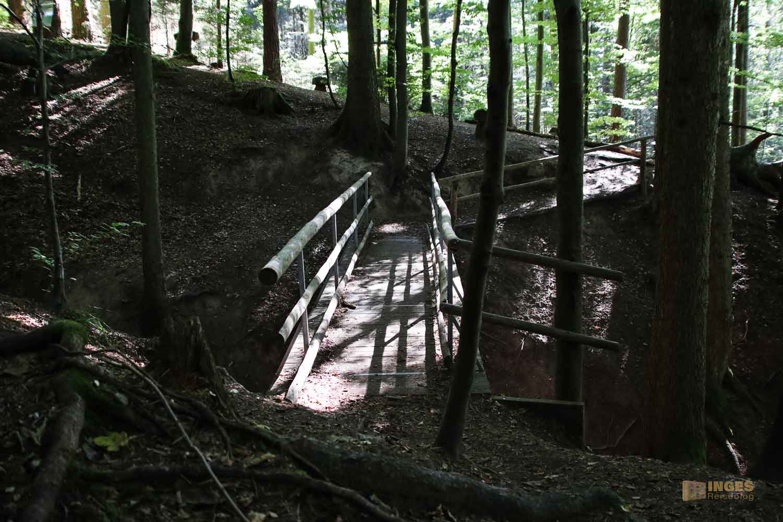 Koboldklinge am Waldlehrpfad am Herrenbachstausee