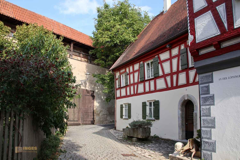 An der Löpsinger Mauer in Nördlingen