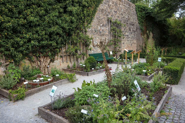 Garten hinter der Stadtmauer in Dinkelsbühl