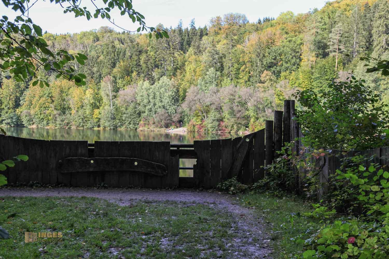 Waldlehrpfad am Herrenbachstausee