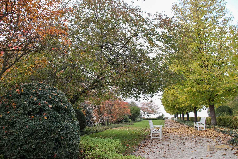 Garten im Schloss ob Ellwangen