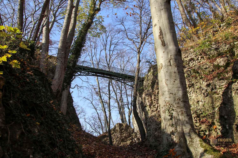 Stahlbrücke zur Burgruine Rosenstein 1065