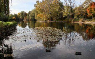 Landschaftspark Talaue in Waiblingen
