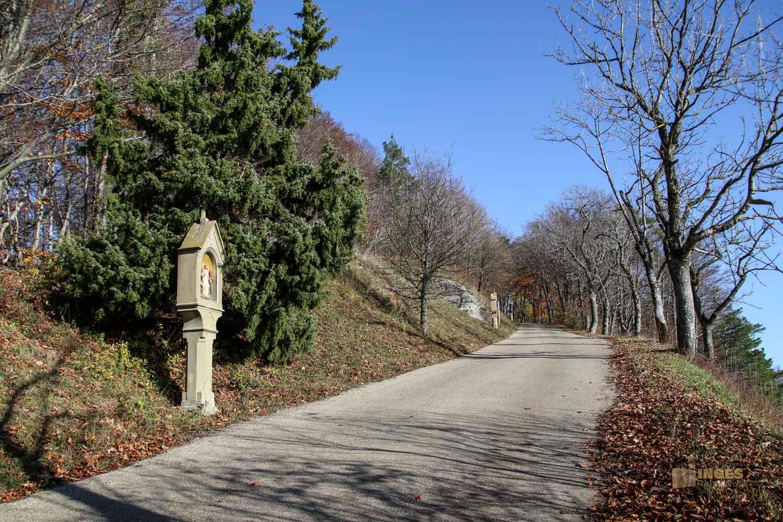 Weg auf den Hohenrechberg 0414
