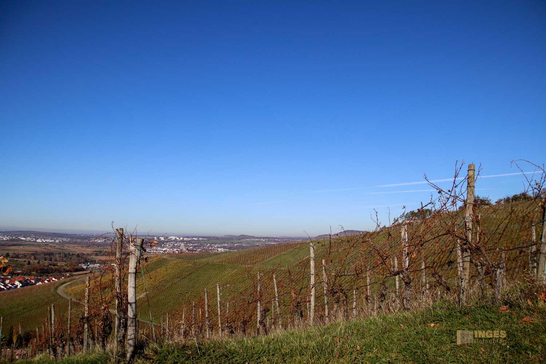 Aussicht von den Weinbergen in Strümpfelbach 0572