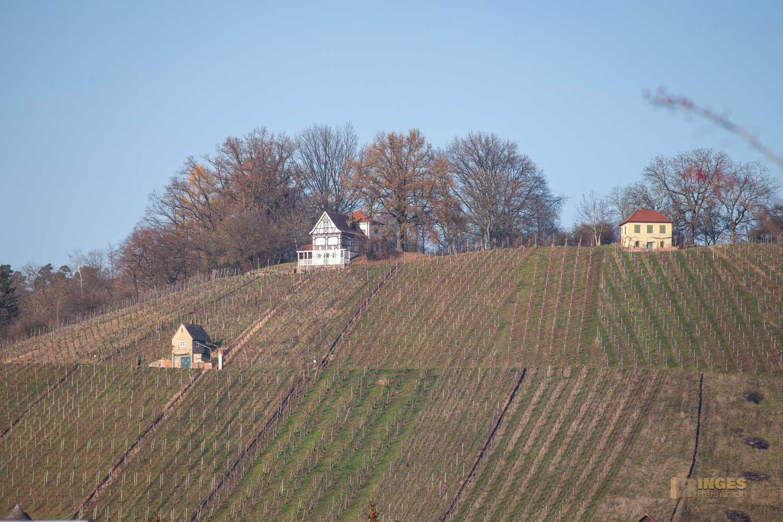 Blick auf den Grafenberg bei Schorndorf 0072