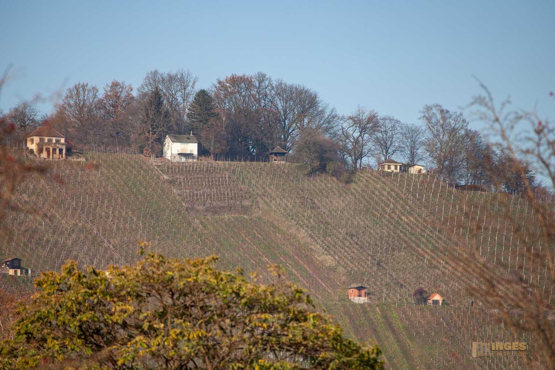 Blick auf den Grafenberg bei Schorndorf 0073
