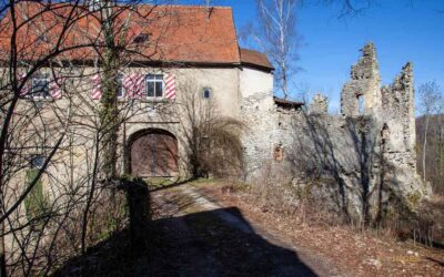 Die Ruine Lauterburg