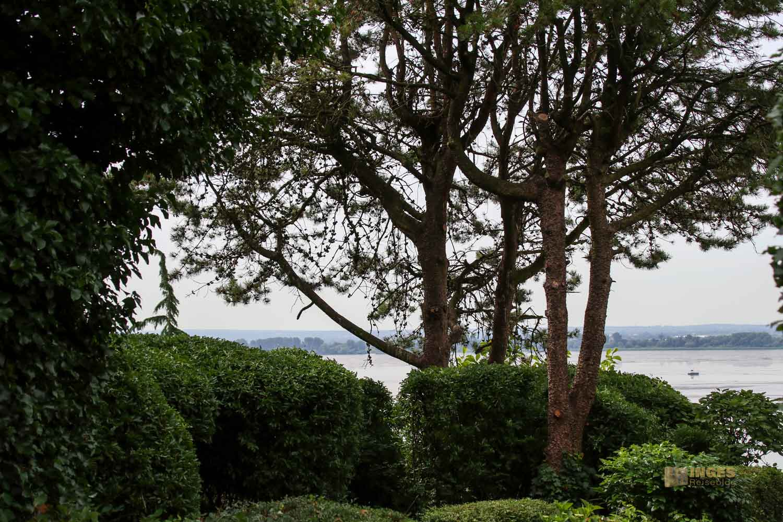 Treppenviertel Blankenese Blick auf die Elbe 0694