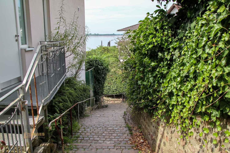 Treppenviertel Blankenese Blick auf die Elbe 0779
